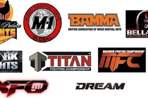 Second Tier MMA by Committee?