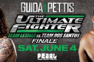The Ultimate Fighter 13 Finale: Wrap-up