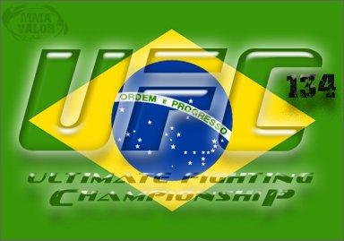 BrazilFlag UFC 134
