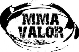 Weekends MMA Betting Upset: UFC 154 and Bellator 81