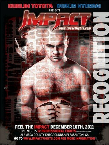 Impact Fights Poster