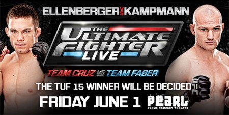 UltimateFighterFinaleEllenbergerKampmann