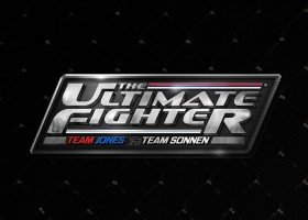The Ultimate Fighter 17