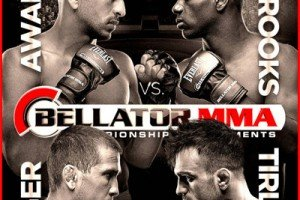 The Fight Report for a Thin Bellator 105